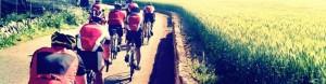 Go SkyRide! bike